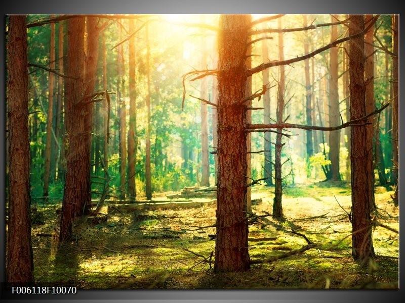 Glas schilderij Natuur   Groen, Geel, Bruin