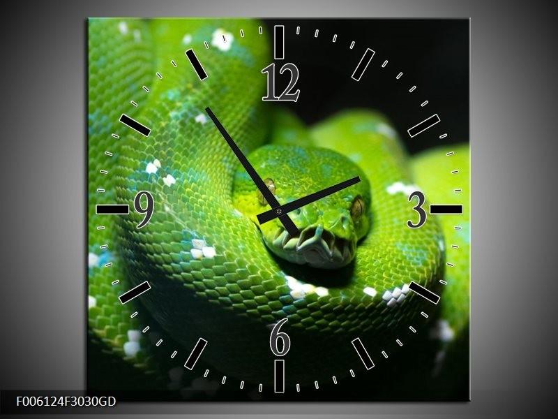 Wandklok op Glas Natuur | Kleur: Groen, Zwart | F006124CGD