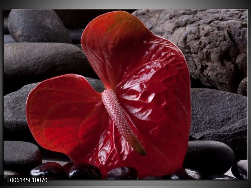 Glas schilderij Spa | Rood, Grijs, Zwart