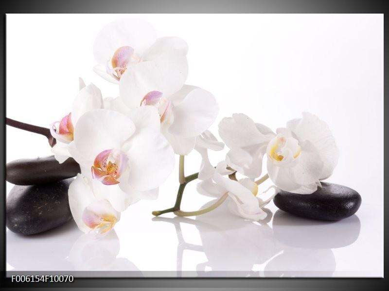Glas schilderij Orchidee | Wit, Zwart