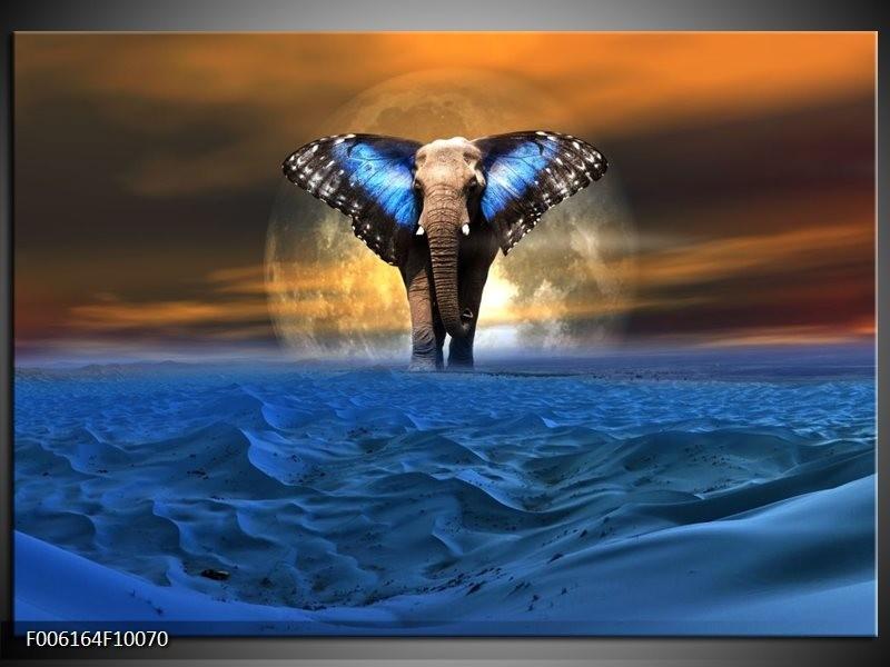 Glas schilderij Olifant | Blauw, Bruin