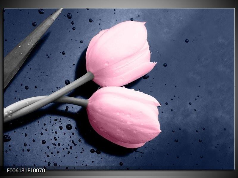 Glas schilderij Tulpen | Roze, Grijs