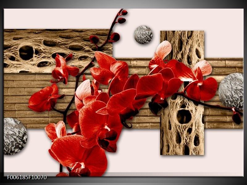 Glas schilderij Orchidee   Rood, Bruin, Crème