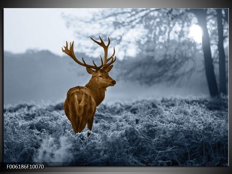 Glas schilderij Hert | Bruin, Blauw, Grijs