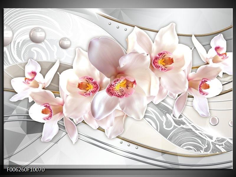 Glas schilderij Orchidee | Grijs, Roze