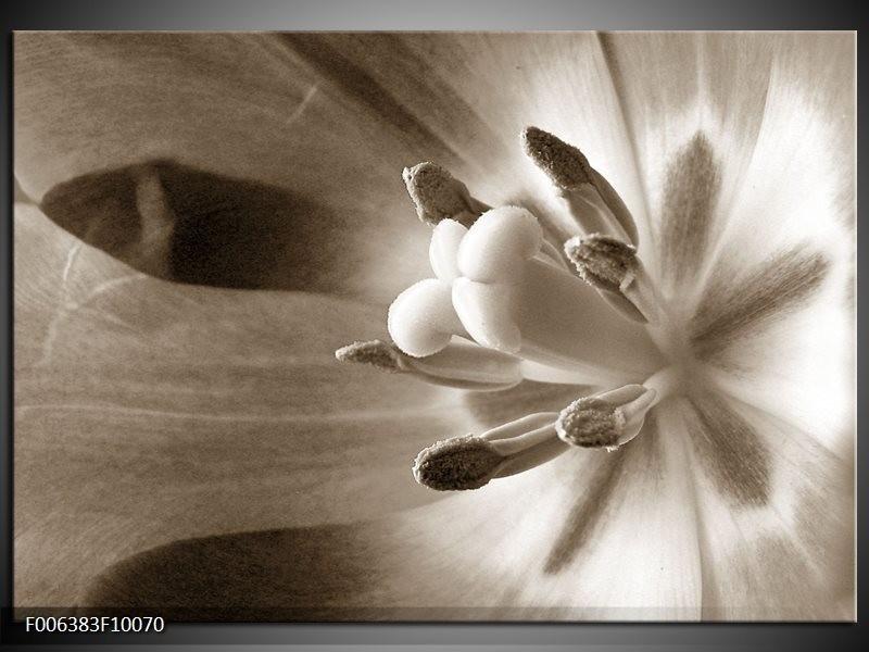 Canvas Schilderij Bloem | Sepia
