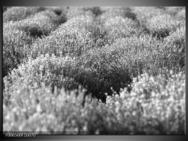 Canvas Schilderij Bloemen | Grijs, Zwart