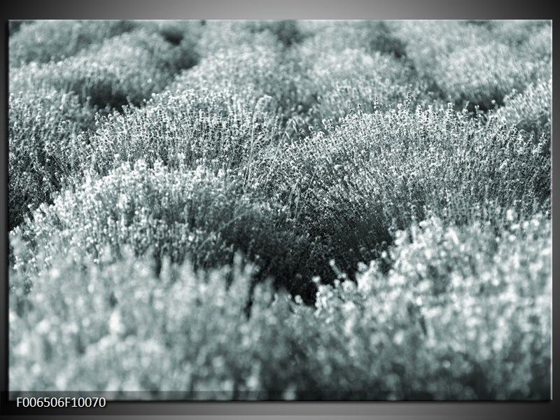 Canvas Schilderij Bloemen | Grijs, Groen
