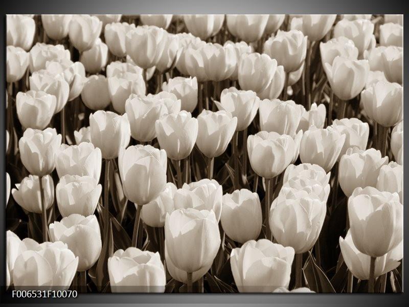 Canvas Schilderij Bloem, Tulpen | Sepia