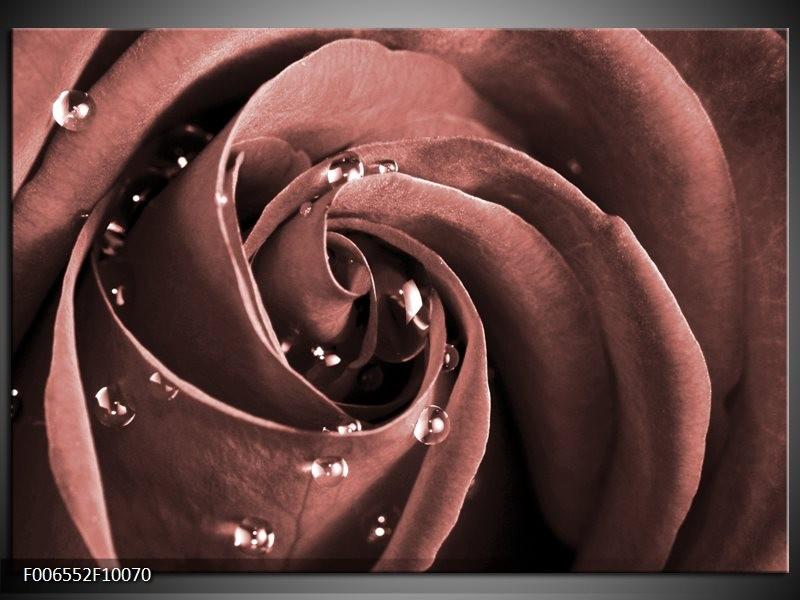 Canvas Schilderij Roos | Bruin, Rood