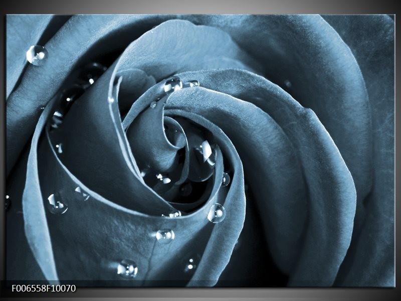 Canvas Schilderij Roos   Blauw, Grijs