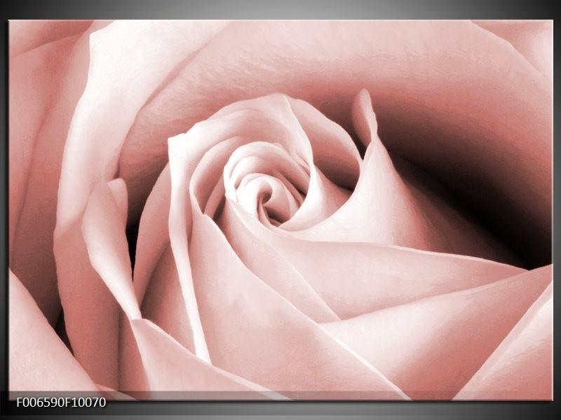 Canvas Schilderij Roos, Bloem | Bruin, Rood