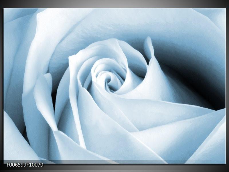 Canvas Schilderij Roos, Bloem | Blauw, Wit