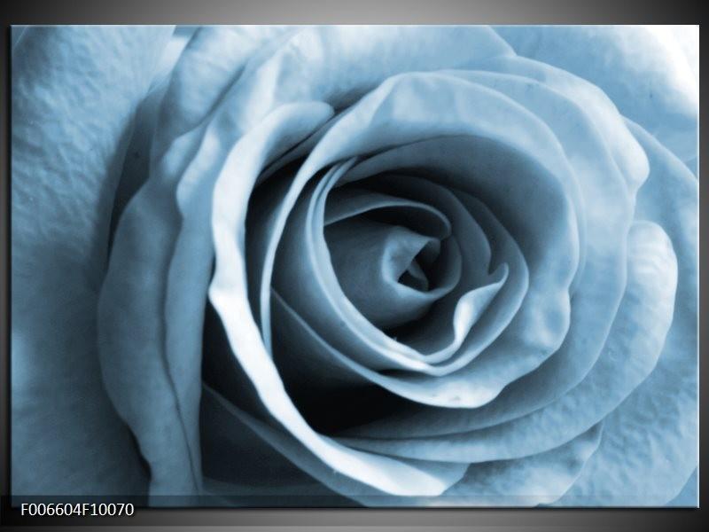 Canvas Schilderij Roos, Bloem | Blauw, Grijs, Wit