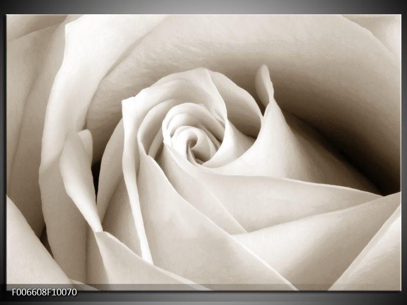Canvas Schilderij Roos, Bloem | Crème, Sepia