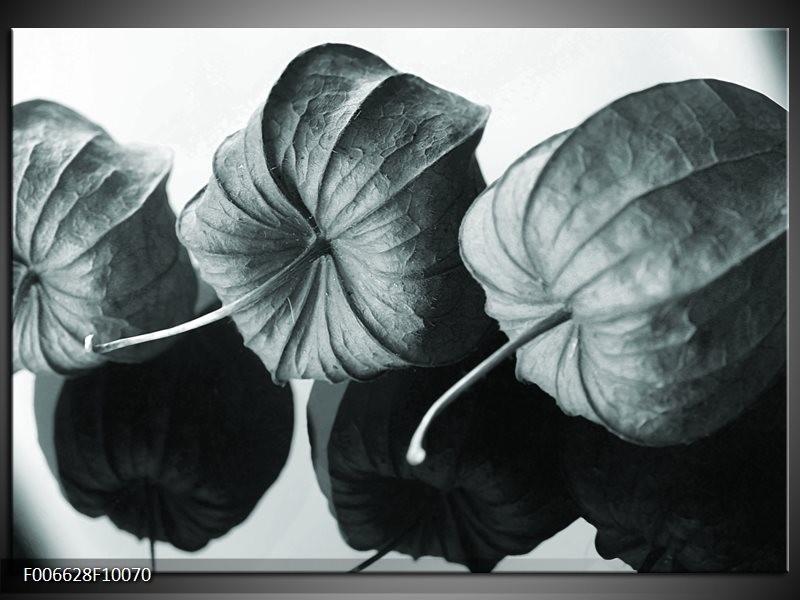 Canvas Schilderij Bloem | Grijs, Groen, Zwart