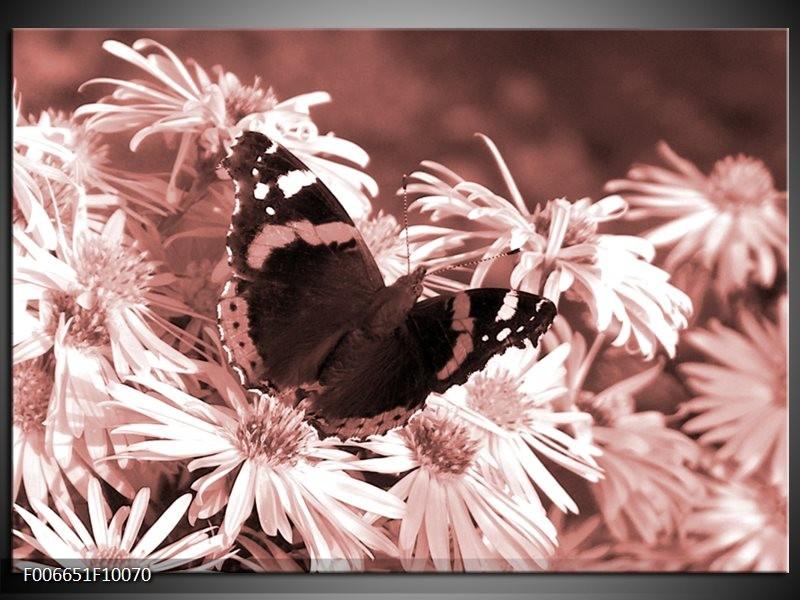 Canvas Schilderij Bloemen, Vlinder | Bruin, Rood, Zwart