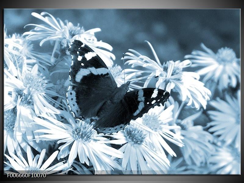 Canvas Schilderij Bloemen, Vlinder | Blauw, Grijs, Zwart