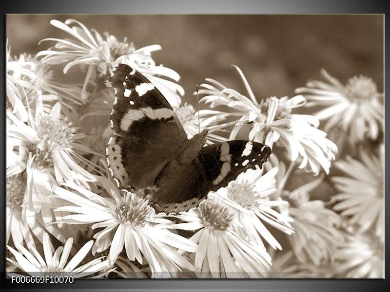 Canvas Schilderij Bloemen, Vlinder | Sepia, Bruin