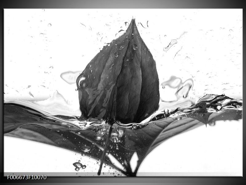 Canvas Schilderij Bloem | Zwart, Wit, Grijs