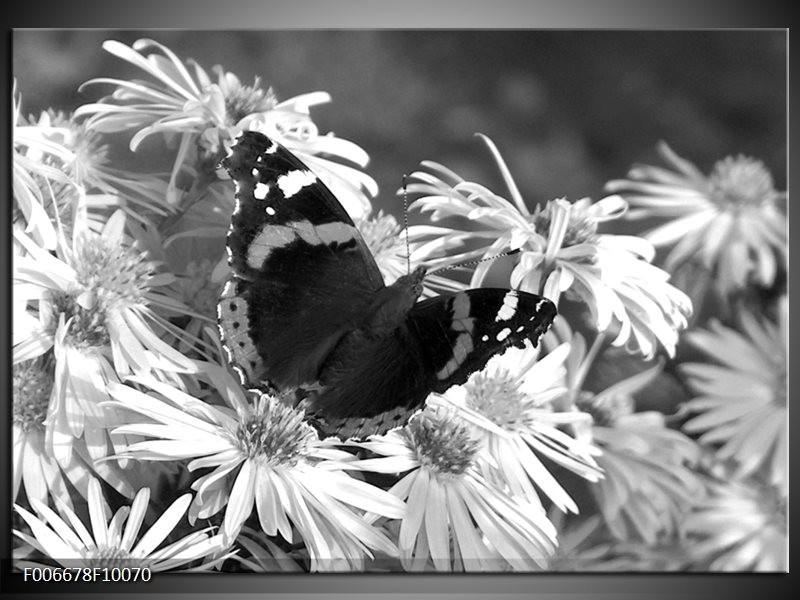 Canvas Schilderij Bloemen, Vlinder | Zwart, Wit, Grijs