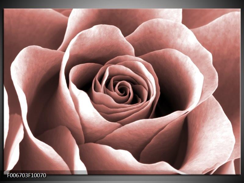 Canvas Schilderij Roos, Bloem | Rood, Bruin