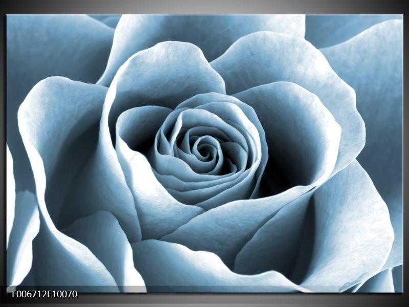 Canvas Schilderij Roos, Bloem | Blauw, Grijs