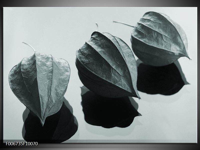 Canvas Schilderij Bloem | Grijs, Wit, Groen