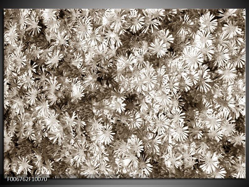 Canvas Schilderij Bloemen | Sepia