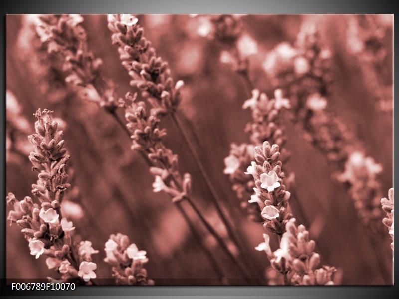 Canvas Schilderij Bloemen, Lente | Bruin, Rood