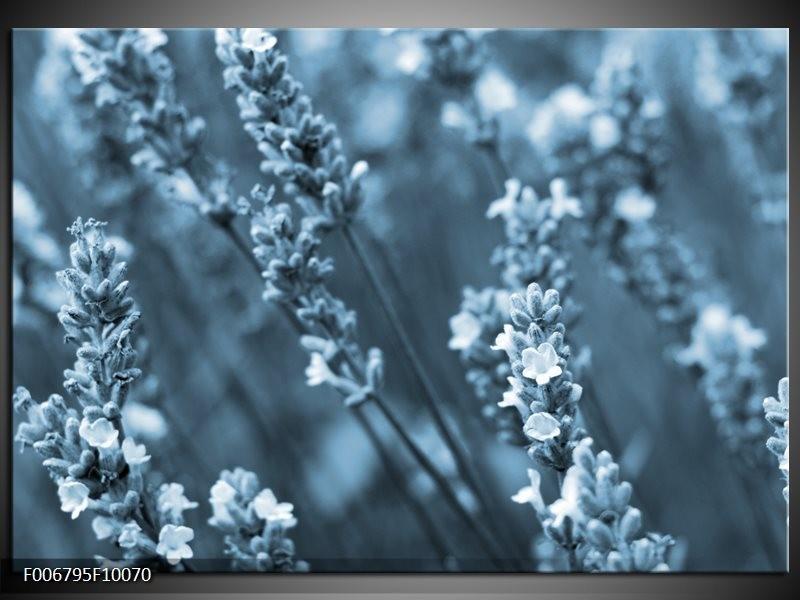 Canvas Schilderij Bloemen, Lente | Blauw, Grijs