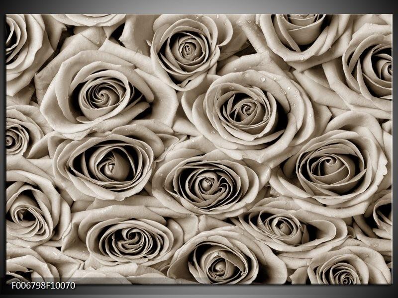 Canvas Schilderij Bloemen, Roos | Sepia
