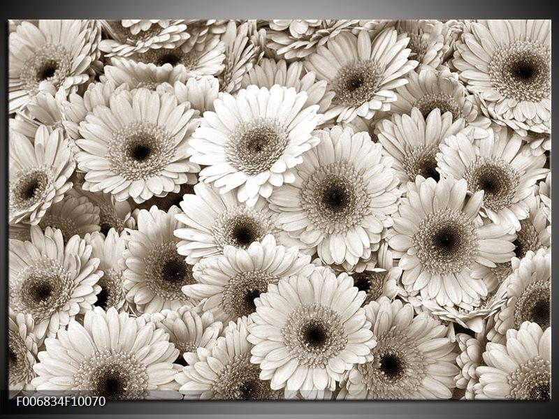 Canvas Schilderij Gerbera, Bloemen   Sepia