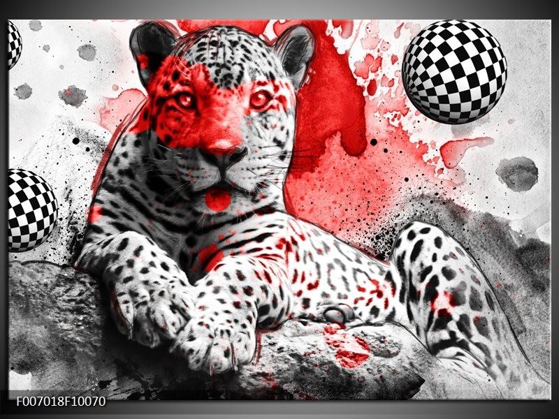 Canvas Schilderij Wilde Dieren | Rood, Grijs, Wit