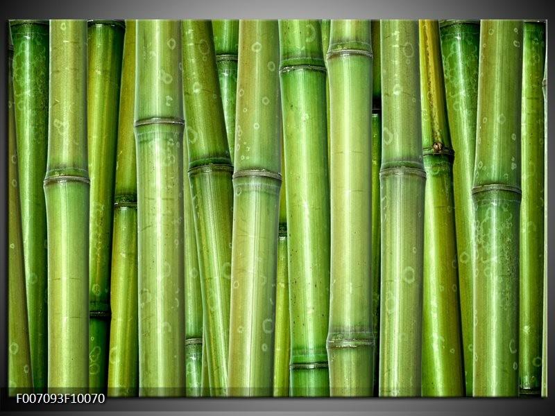 Canvas Schilderij Bamboe, Natuur   Groen