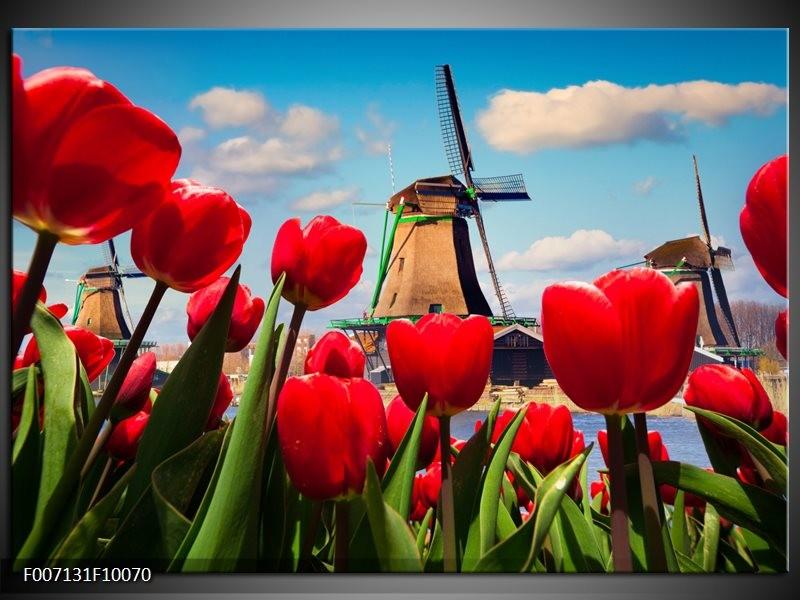 Canvas Schilderij Tulpen, Molen | Rood, Blauw, Grijs