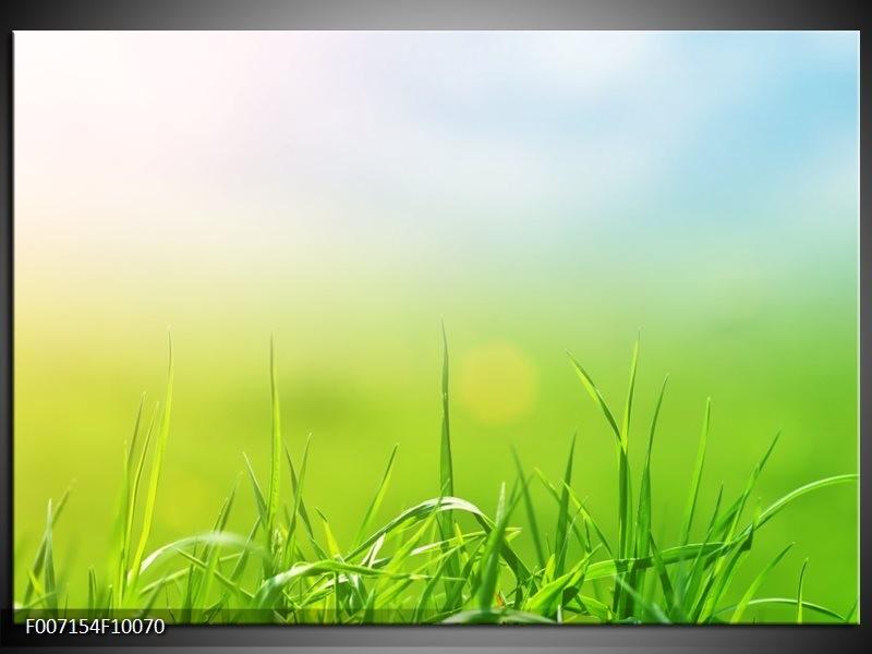 Canvas Schilderij Natuur, Gras   Groen, Geel