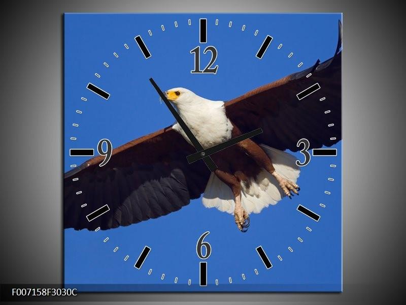 Wandklok Schilderij Adelaar, Vogel | Blauw, Wit, Zwart