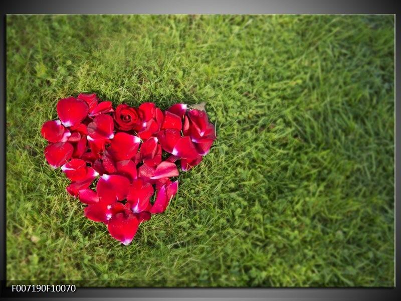 Canvas Schilderij Bloem, Gras | Rood, Groen, Roze