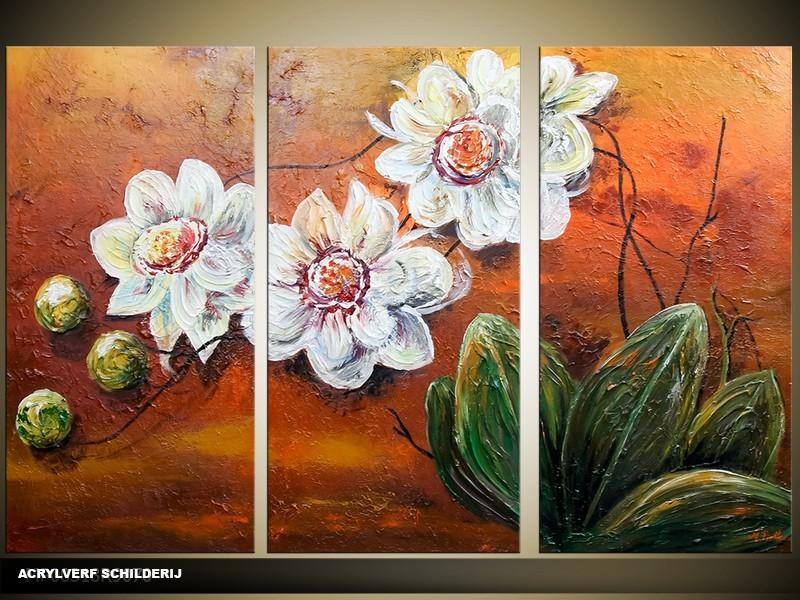 Acryl Schilderij Natuur | Bruin, Groen, Wit | 120x80cm 3Luik Handgeschilderd