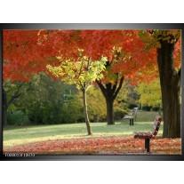 Foto canvas schilderij Park | Oranje, Geel, Groen