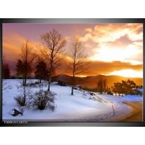 Foto canvas schilderij Winter | Wit, Bruin, Oranje
