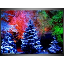 Foto canvas schilderij Kerstboom | Blauw, Groen, Rood