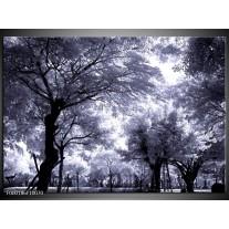 Foto canvas schilderij Bomen | Grijs, Wit, Zwart
