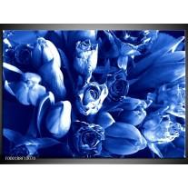 Foto canvas schilderij Bloemen   Blauw, Wit