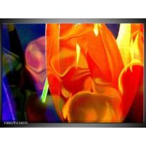 Foto canvas schilderij Abstract   Rood, Geel, Oranje