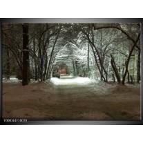 Foto canvas schilderij Natuur   Grijs, Wit