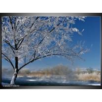 Foto canvas schilderij Boom | Blauw, Wit, Grijs
