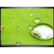 Foto canvas schilderij Druppels | Groen, Wit, Grijs