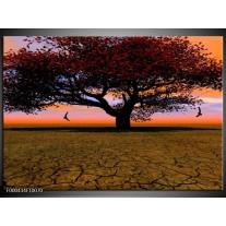 Foto canvas schilderij Boom | Bruin, Oranje, Zwart